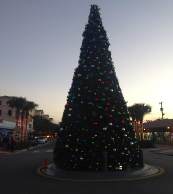 Lauderdale-By-The-See Xmas Tree :)